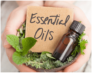 Are essential oils safe for dogs and pets